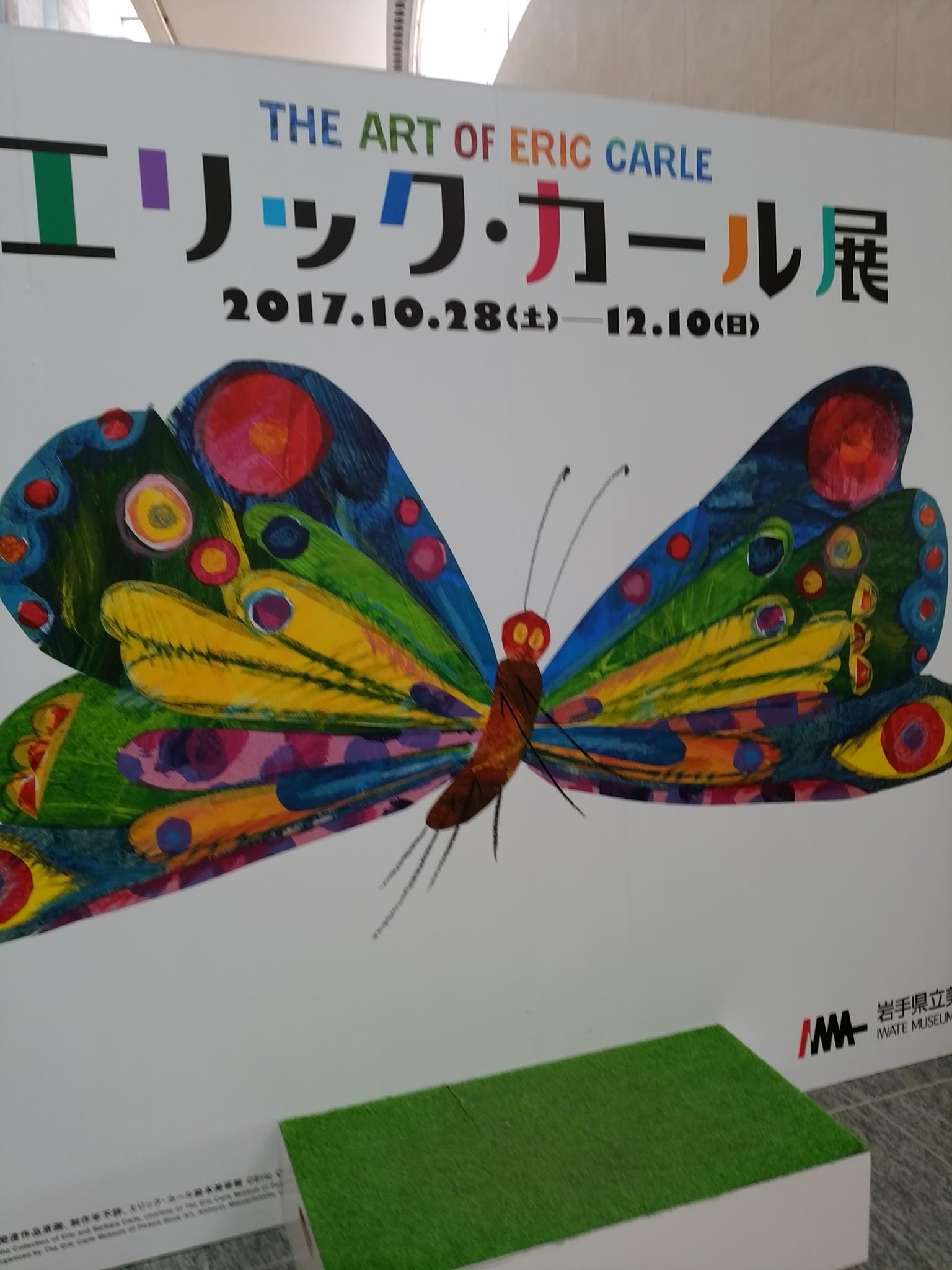 IMG_20171121_122545.jpg