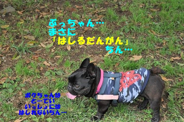 DSC_0024_20171012101101690.jpg