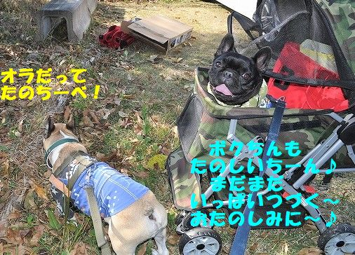 DSC_0136_20171106113708206.jpg