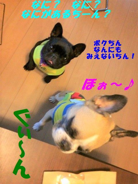 FullSizeR_201709271433058f6.jpg