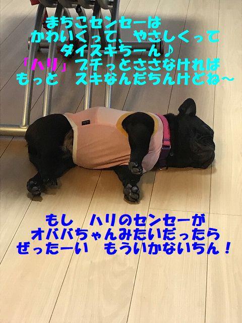 IMG_5599_20171004095406538.jpg