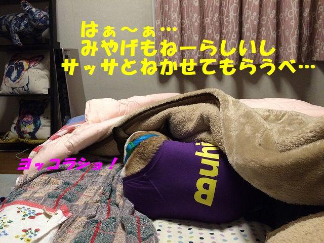 IMG_5828_20171017172511c20.jpg