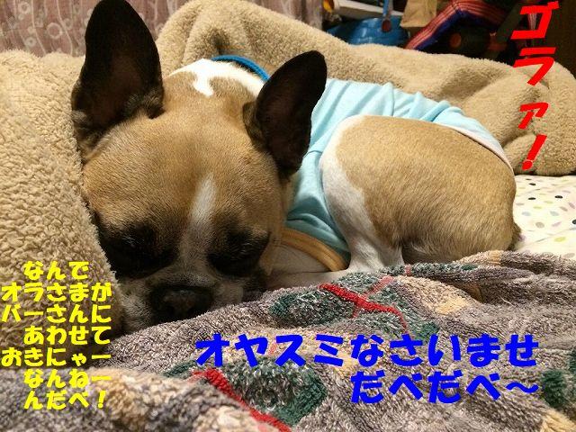 IMG_6001_20171116135048d61.jpg