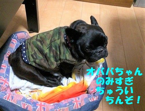 IMG_6420.jpg