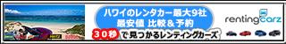 320x50_hawaii.jpg