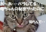 201709301304113f7.jpg