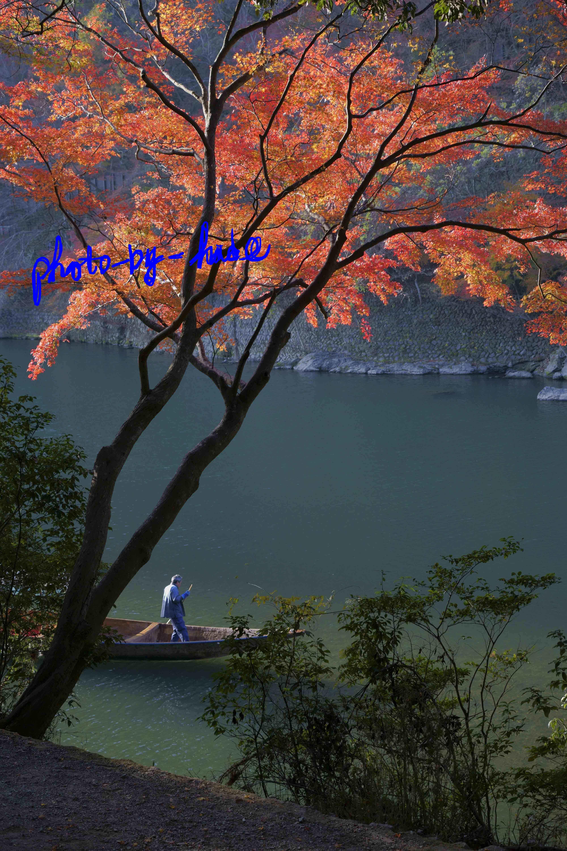 嵐山1本2_edited-1