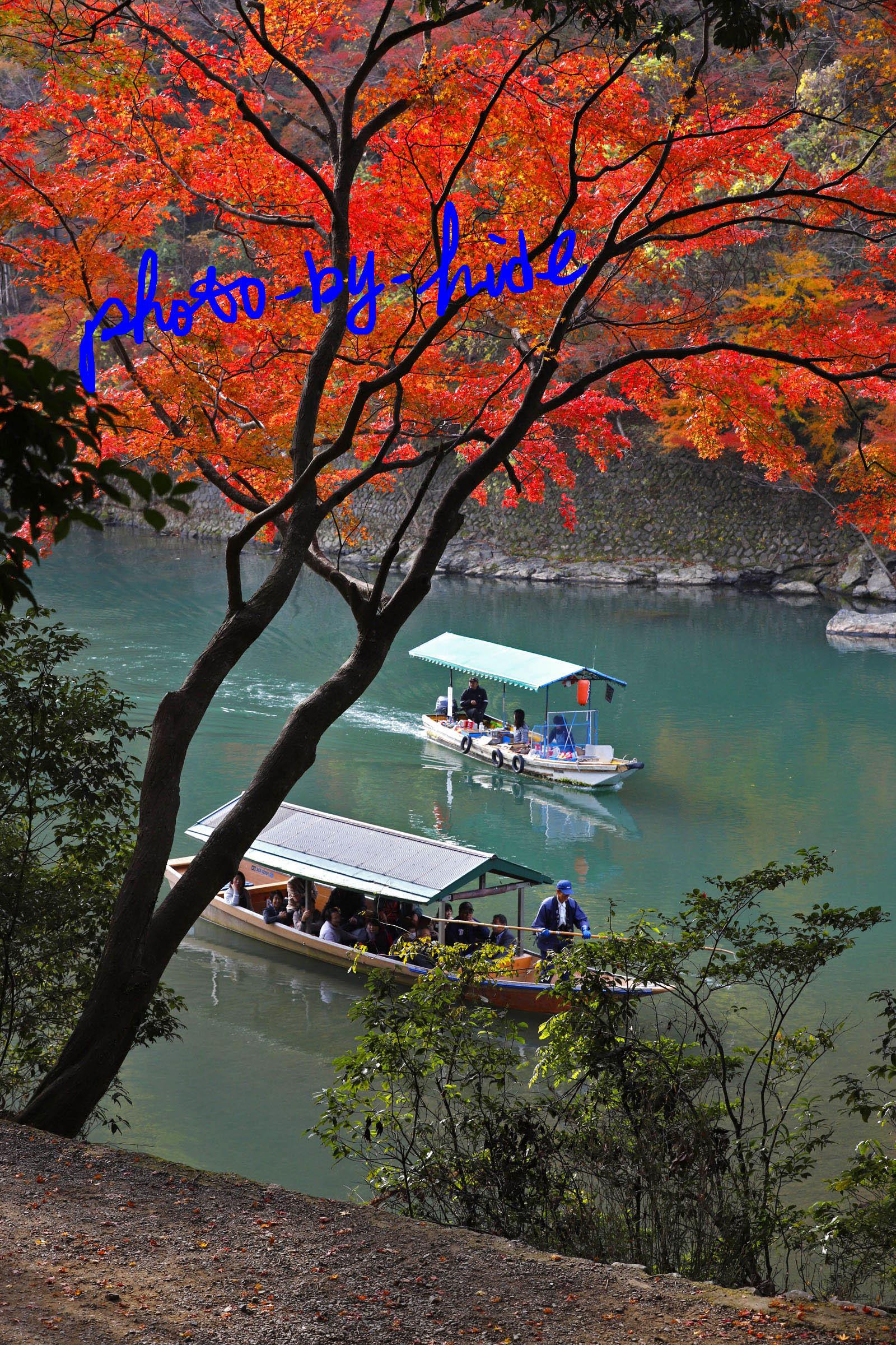 嵐山1本4