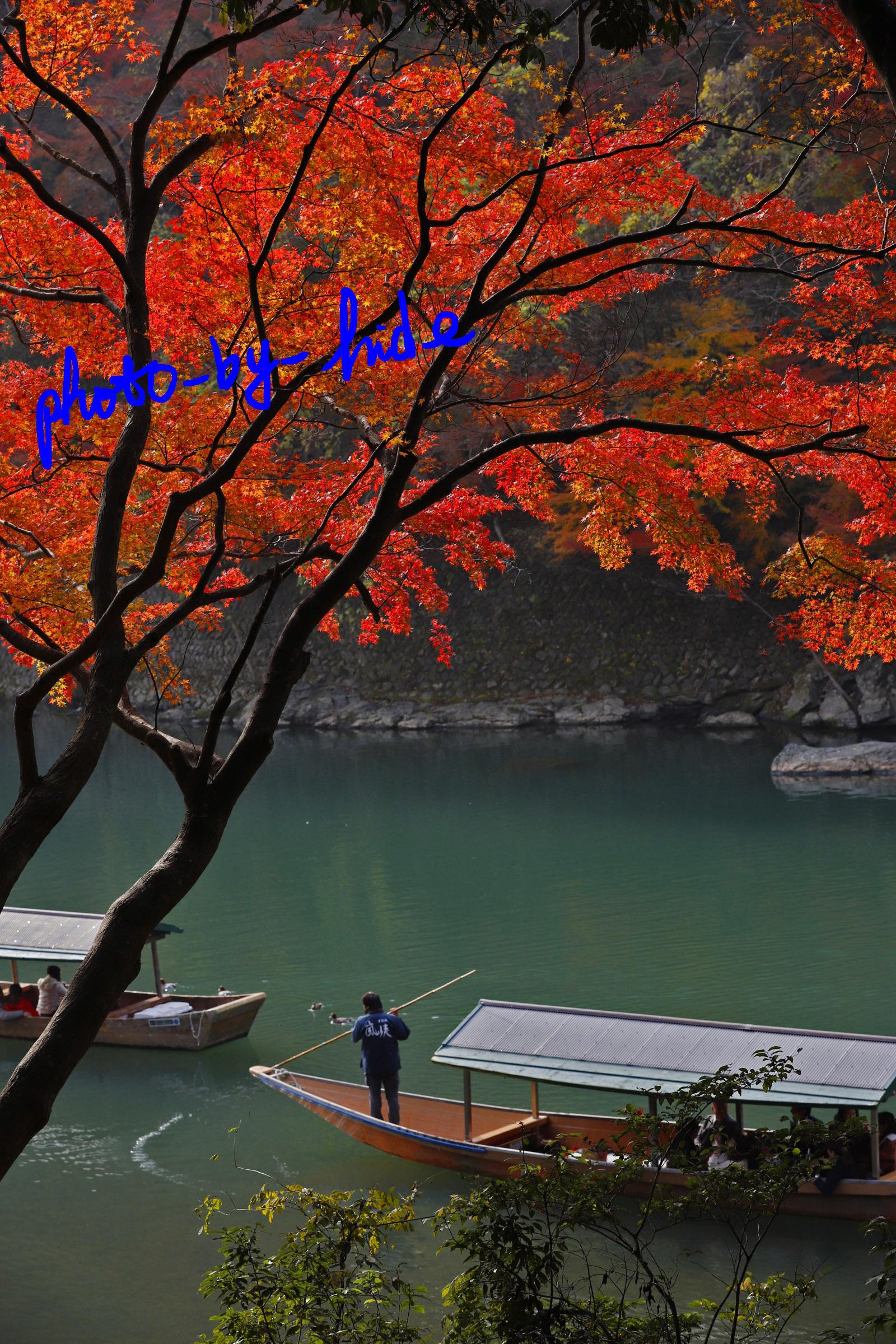嵐山1本7