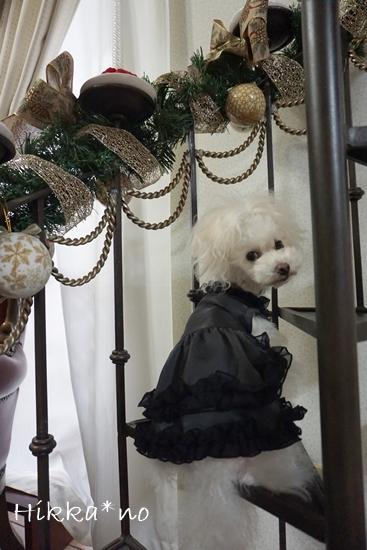 黒ドレス六花