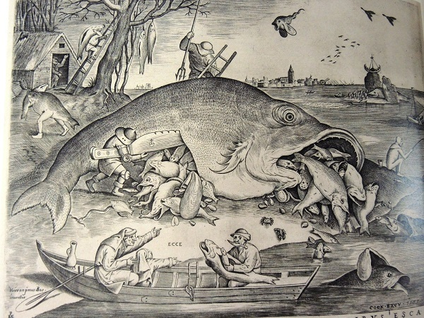 BR大きな魚は小さな魚を食う