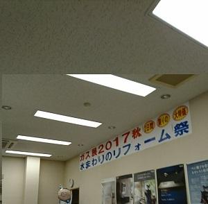 DSC_2090-1.jpg