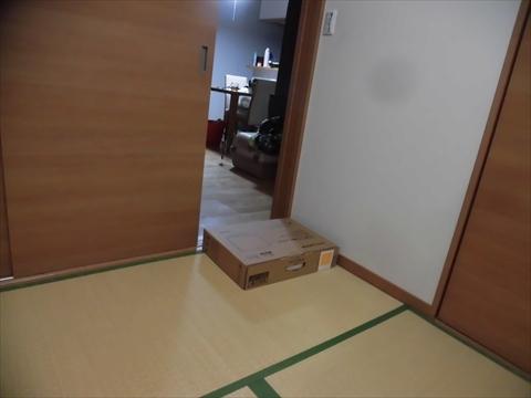 CIMG8376_R.jpg