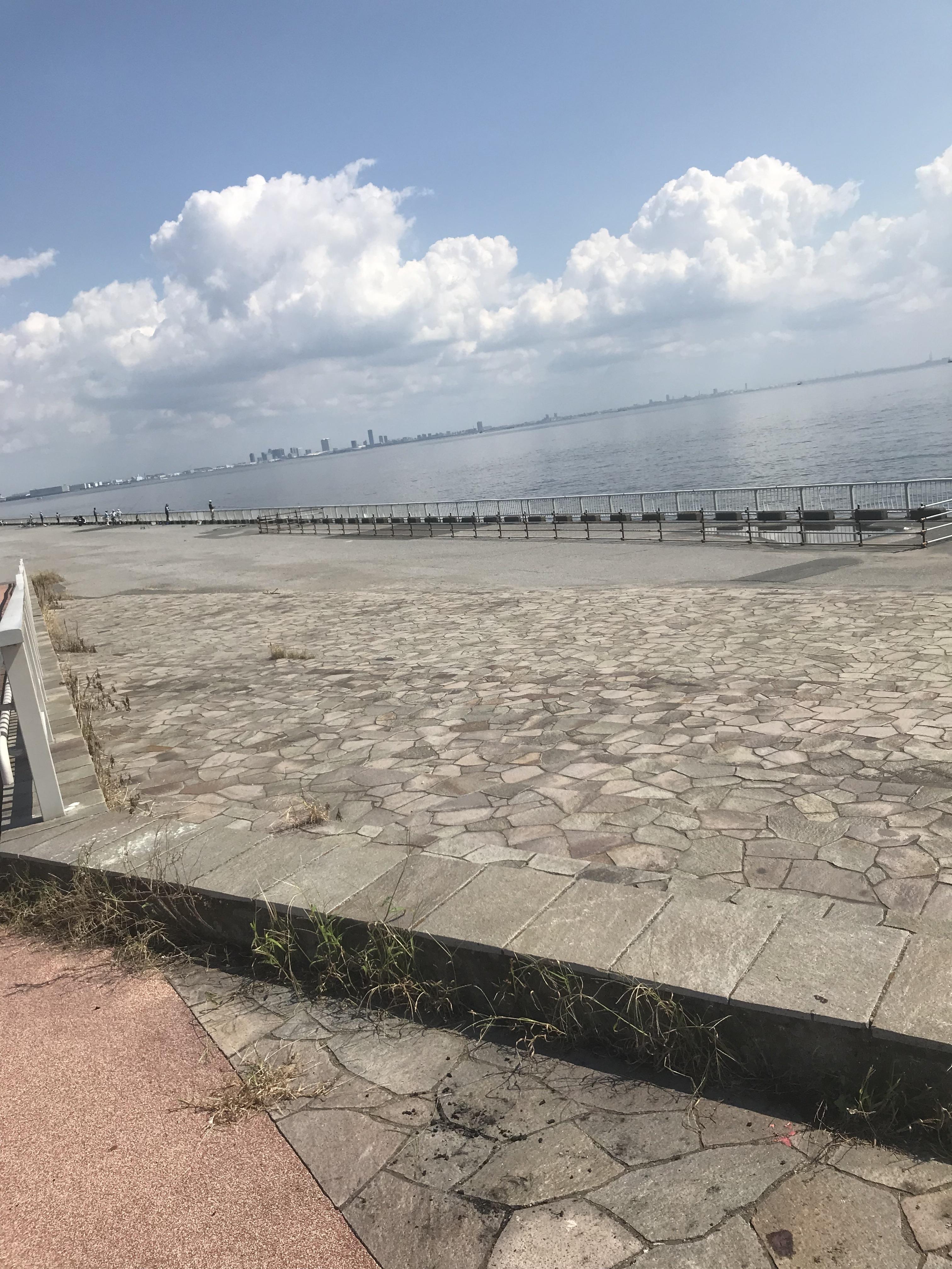 広い海浜公園です