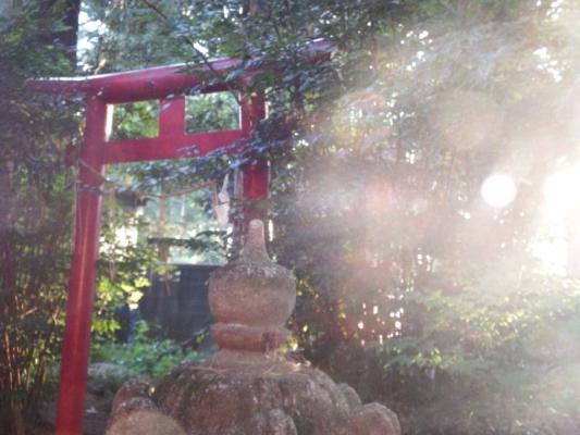 夏見日枝神社 光