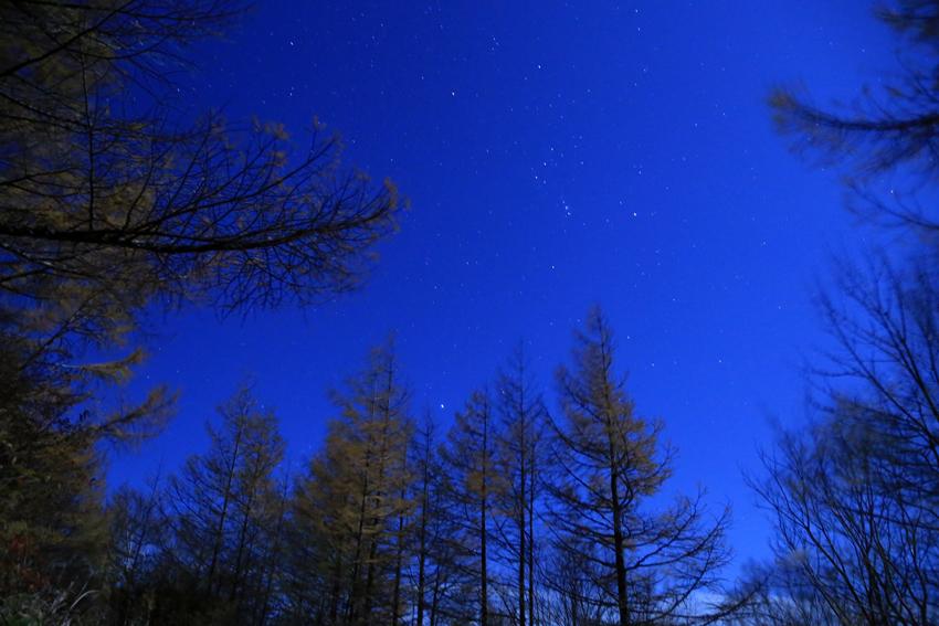 20171104五葉山登山道から見た月光下の星空