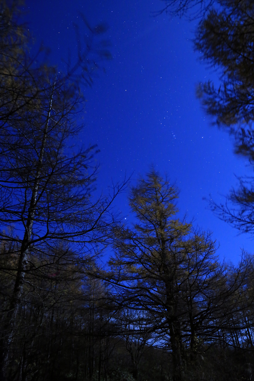 20171104五葉山登山道から見た月光下の星空2