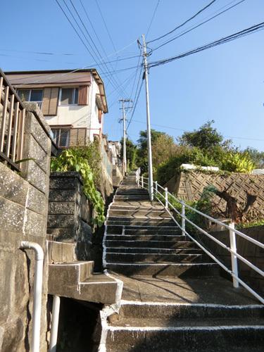 この階段、登りま~す!