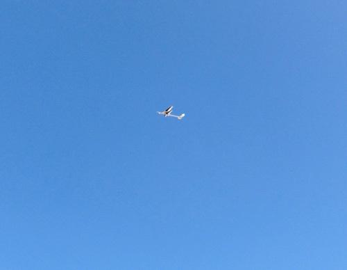 ケントウロス・ワン、飛んでるトコ。 その1!