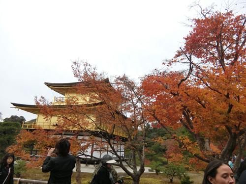 金閣寺、その4。