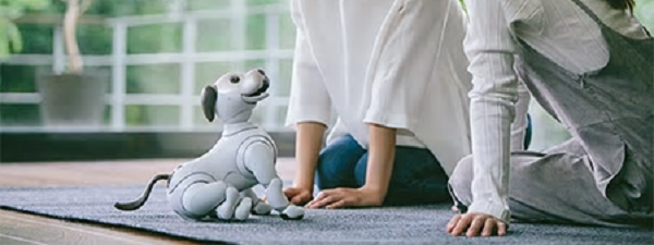 227_aibo_images 003p