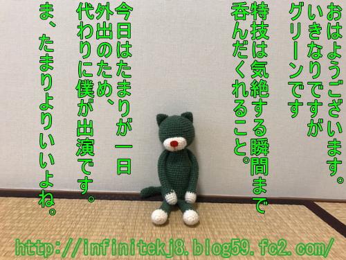 gcat10161.jpg