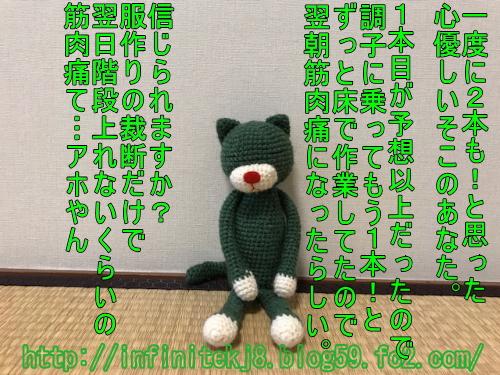 gcat10163.jpg