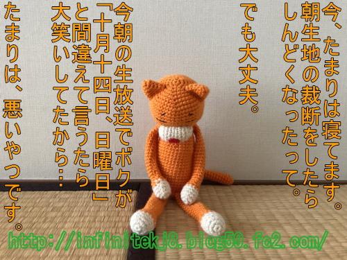 orange10142.jpg