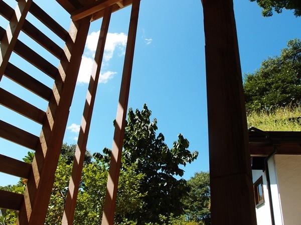 薪小屋から見る秋の空