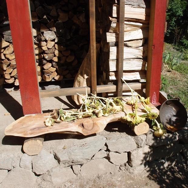 薪小屋と小鳥の餌用ヒマワリ