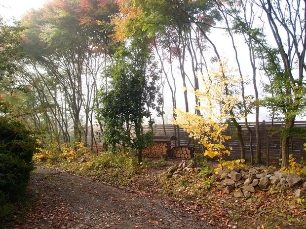 朝霧と木製フェンス