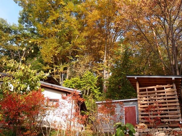 薪小屋周辺