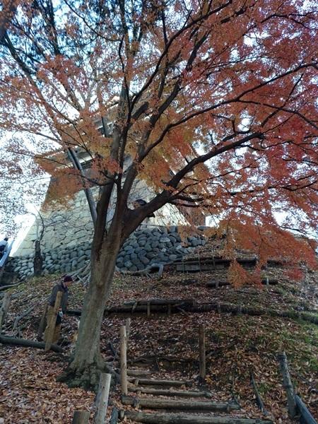 上田城、紅葉のなごり