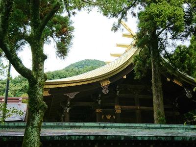 宮地嶽神社光の道9