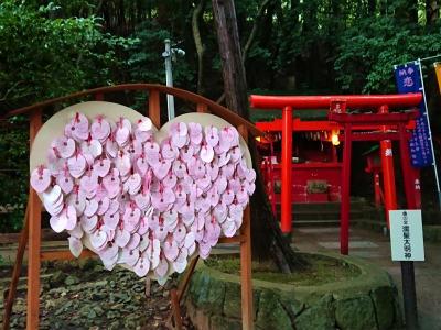 宮地嶽神社光の道11