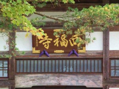 新潟西福寺3