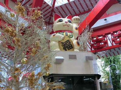 2017年11月名古屋3