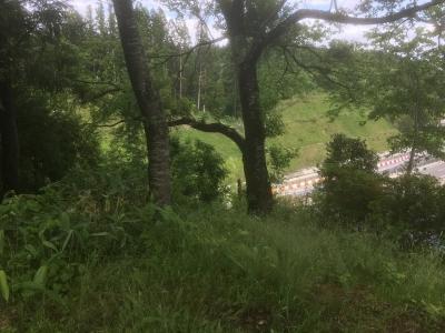 国道13号線で分断された北東側