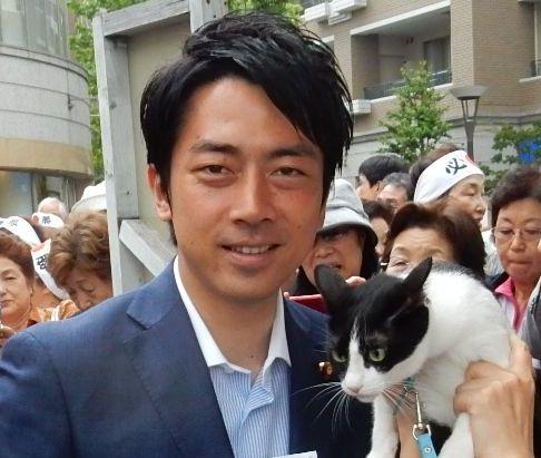 衆議院議員 小泉進次郎先生 アップ
