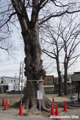 東八幡神社(春日部市粕壁東)6