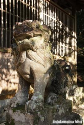 東大谷日女命神社(橿原市畝傍町69)13
