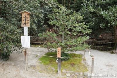 上賀茂神社(京都市北区上賀茂本山)29