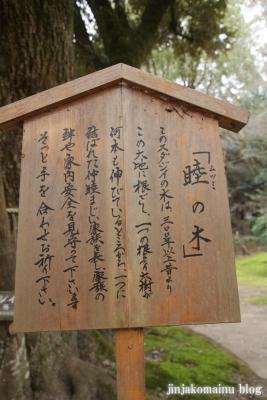 上賀茂神社(京都市北区上賀茂本山)58