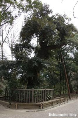 下鴨神社(京都市左京区下鴨泉川町)34