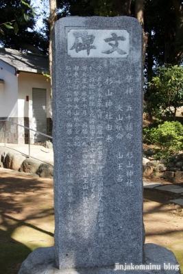 杉山神社(横浜市港北区岸根町)4