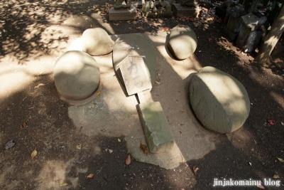 篠原八幡神社(横浜市港北区篠原町)18