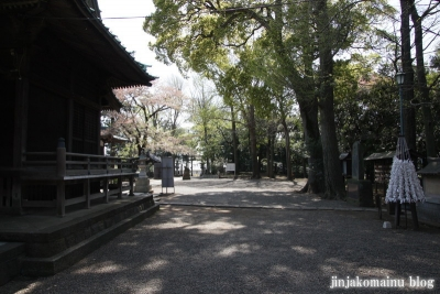 篠原八幡神社(横浜市港北区篠原町)37