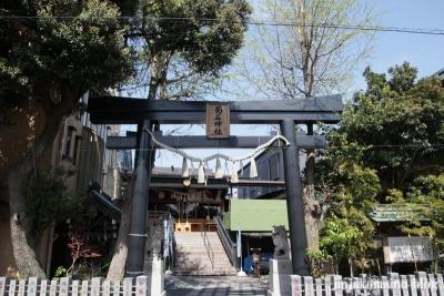 菊名神社(横浜市港北区菊名)2
