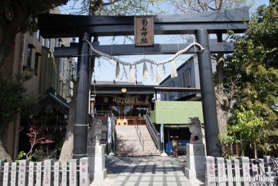 菊名神社(横浜市港北区菊名)3
