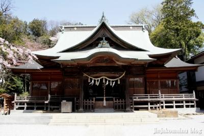 熊野神社(横浜市港北区師岡町)15